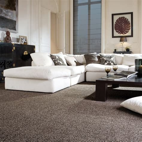 Carpet Colours For Living Rooms by Emperor Twist Carpet Carpets Carpetright