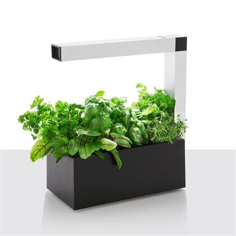 indoor herb planters herbie indoor herb garden planter black uk