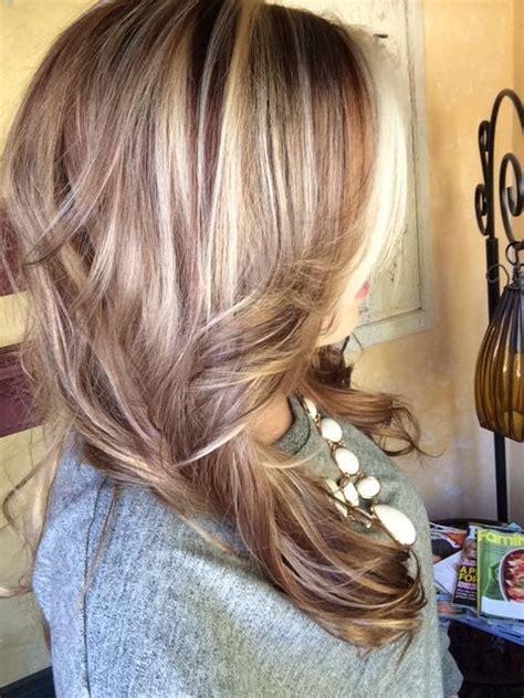 adding lowlights to ash brown hair 53733a9eb3db2c54f1aa899575e6461d jpg 480 215 640 pixels hair