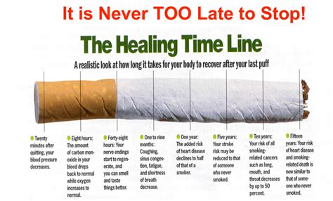 Can You Smoke Cigarettes While Detoxing For A Test by This Is How Quickly Your Can Recover If You Stop