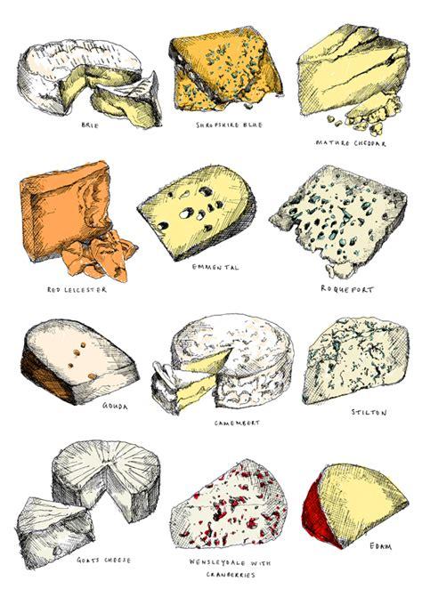 van millingens food illustrations design week