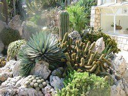 giardino botanico montecarlo giardino esotico di monaco piazza quartiere angolo di