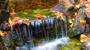 beautiful waterfalls with flowers beautiful waterfall wallpapers wallpaper cave