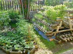 Farming In Your Backyard - urban container gardening jojo rom inspirations home inspirations