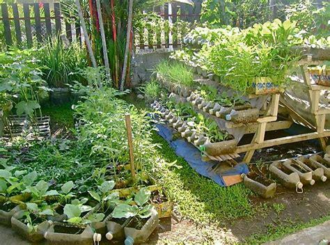 Urban Container Gardening Jojo Rom Inspirations   Home