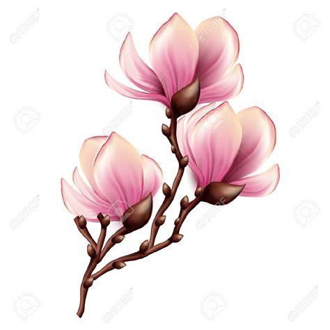 tatoo stock images royalty free magnolia stock photos images royalty free magnolia images