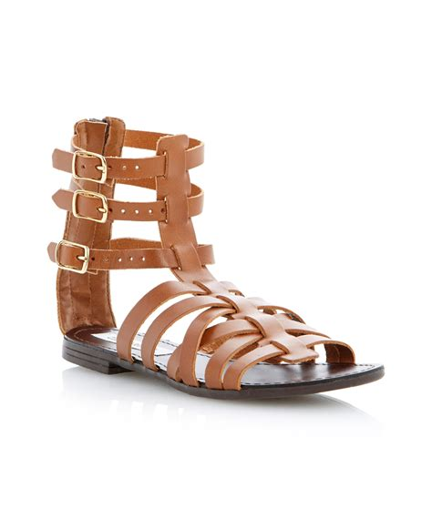 ankle gladiator sandals steve madden plato ankle gladiator sandals in brown