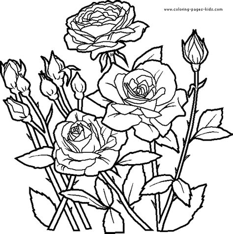 coloring pictures of roses and flowers roses coloring pages printable