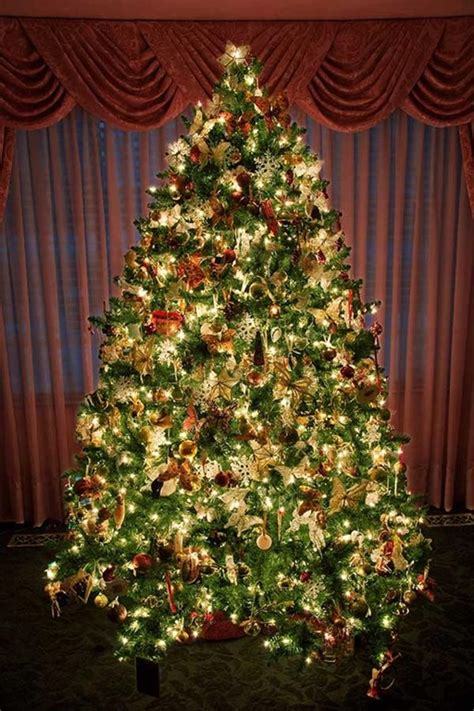 pretty decorated christmas trees 24 beautiful tree pictures creative cancreative can