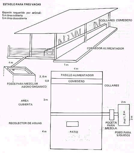 prctico para la construccin de corrales y manejo de aves y c instalaci 243 n de establo ganaderia pinterest