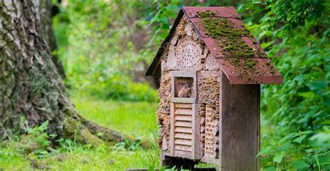 build  bug hotel diy garden