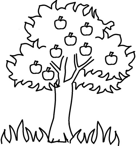 coloring page of a apple tree apple tree coloring pages az coloring pages