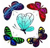 Mariposas A Color Y Blanco Negro Tattoo Car Pictures