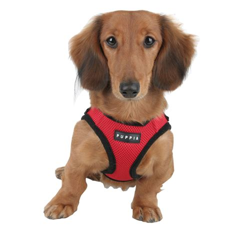 for dogs puppia soft mesh harness for dogs