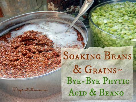 whole grains phytic acid les 49 meilleures images du tableau real food germ 233 s ou