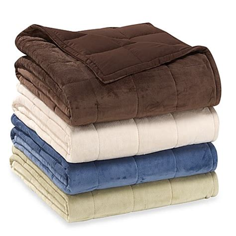 bed bath and beyond blankets albany thinsulate blankets bed bath beyond