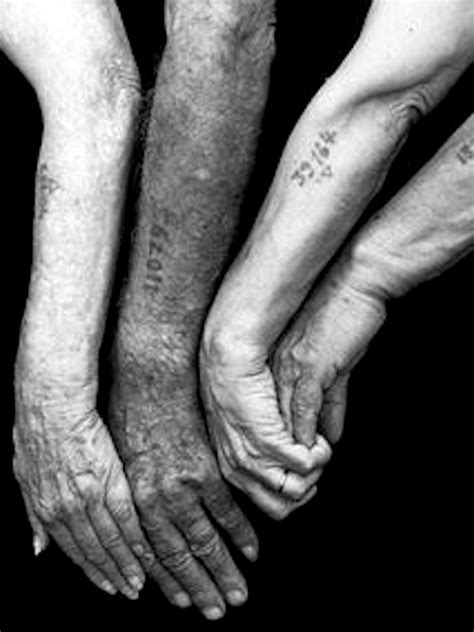 holocaust survivors tattoos theresienstadt rodrigo de torre create