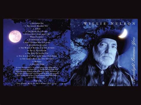 blue lyrics you always hurt willie nelson you always hurt the one you lyrics