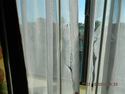 ripped curtains ripped curtains picture of key west inn key largo key