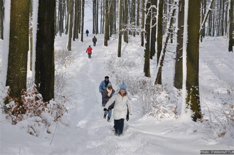 marche di lade l ardenne en hiver 10 bons plans blancs comme neige
