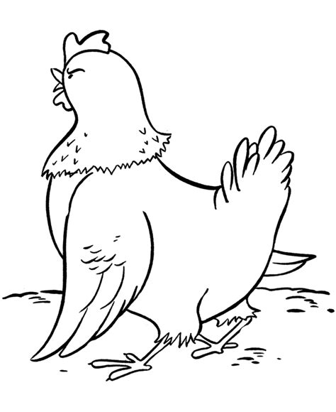 coloring page for hen chicken coloring pages coloring home