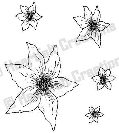 Clematis Und 3453 by Hcpc 3453 Malabar Clematis Pre Cut Sts Heartfelt Creations