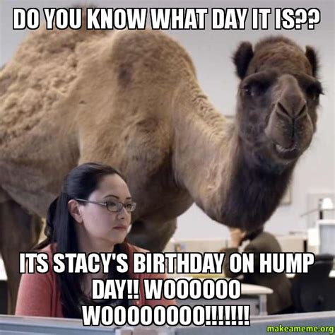 You Know What To Do Meme - do you know what day it is its stacy s birthday on hump