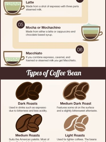 types of coffee beans 28 images description types of coffee beans select your favorite