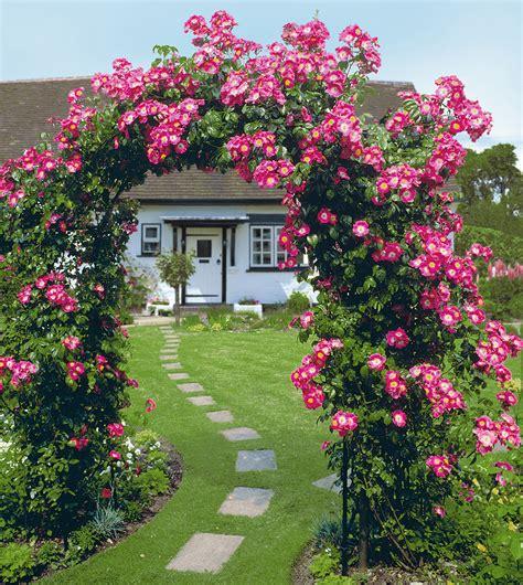 Rosenbogen Garten by Rosenbogen Classic Gr 246 223 E 1 Rosenb 246 Obelisken Beckmann Kg Ihr Spezialist F 252 R
