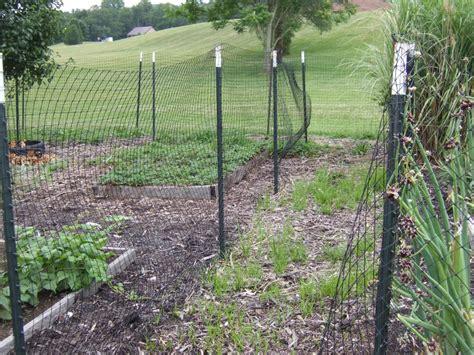 Small Garden Fence Home Depot Photos Hgtv