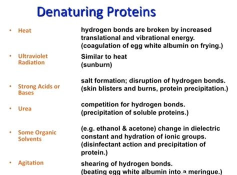 a protein can become denatured when 2nd proteins reflection and review