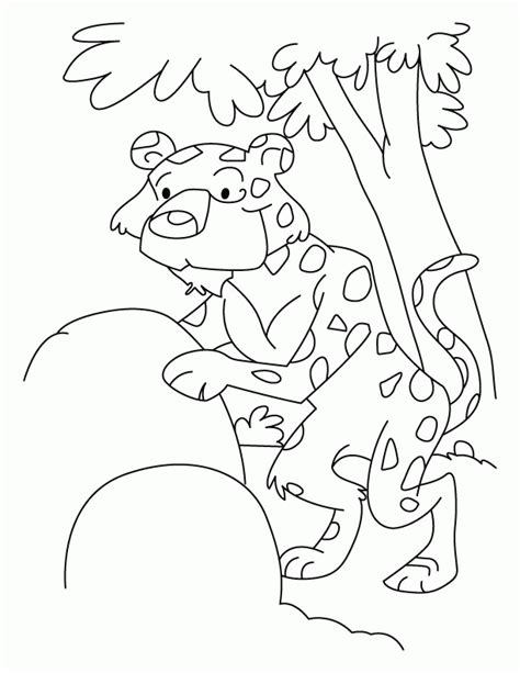 Leopard Ready For Shooting Coloring Pages Download Free Shooting Coloring Pages
