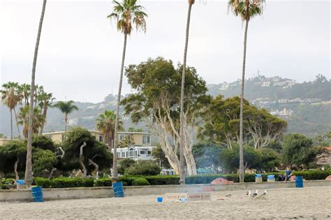 san diego beaches with pits 20 reasons la jolla shores is san diego s best la