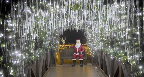 lehigh valley zoo s winter light spectacular shines