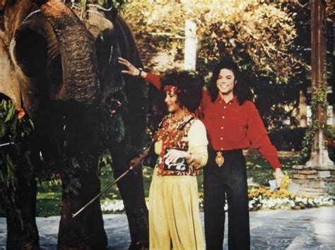 what happened to mjs other boyfriend michael jackson s pets what happened to the animals at