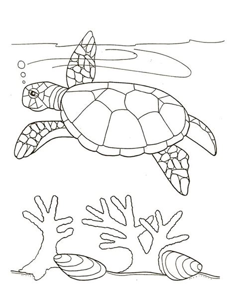 Seaweed Coloring Book Coloring Pages Seaweed Coloring Pages