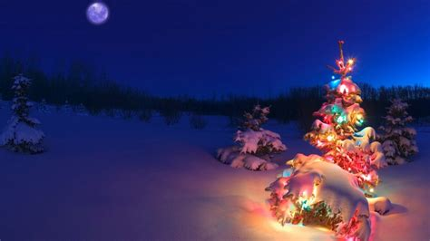 christmas tree hd wallpaper of christmas hdwallpaper2013 com