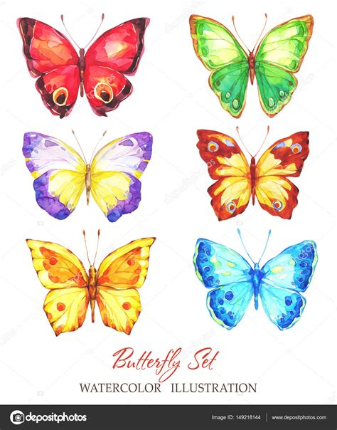 Butterfly Set painted butterfly set stock photo 169 anastezzzia