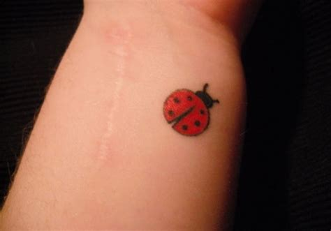 lady bug tattoos 31 dainty ladybug tattoos creativefan