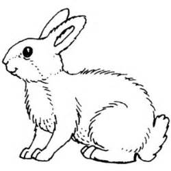 White Rabbit Coloring Page sketch template