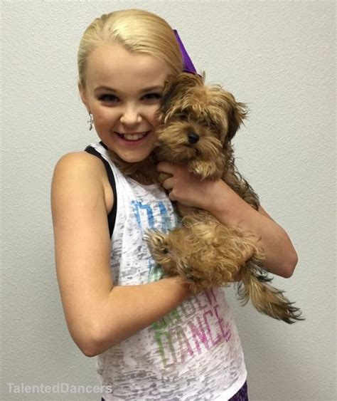 Jo In Clothes For Pets S 31 best jojo siwa images on jojo siwa bows