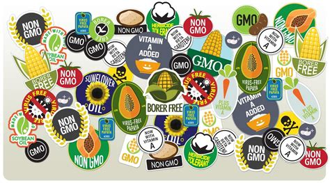 Ads American Essay Manipulate by William Saletan On Gmo Myths In Slate Biology Fortified