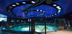 Carolina Lighting New England Aquarium Giant Ocean Tank Renovation And