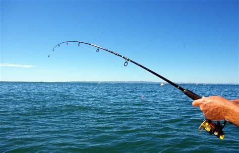 Pancingan Buat Di Laut harga ikan melambung hobi memancing tumbuh kembali