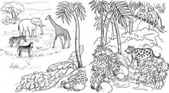Jungle scenes colouring pages