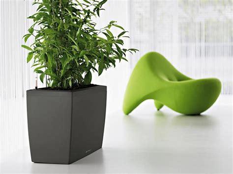 vasi lechuza il vaso con irrigatore automatico