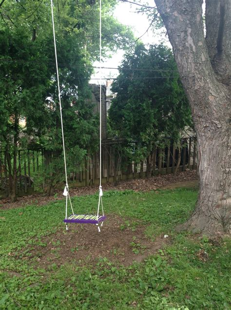 how to hang your own tree swing excellence at home