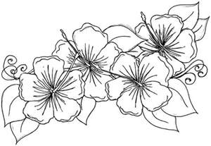 Flowers Coloring Pages Print free printable hibiscus coloring pages for