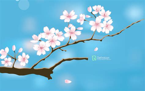 spring wallpaper for mac computer photo of spring hd wallpapers and pictures graphics for