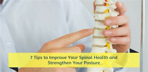 7 Tips For Improving Your Posture by 7 Tips To Improve Your Spinal Health And Strengthen Your